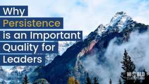 Why persistence is an important quality for leaders mountain top