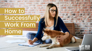 Woman on bed with dog and laptop - how to successfully work from home