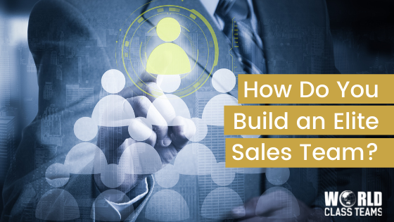 How do you Build an Elite Sales Team? And Why Does it Matter that You Do?